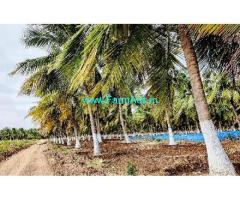3 Acres Agriculture Land For Sale In Kudimangalam