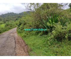 2 acre plain land for sale in Mudigere