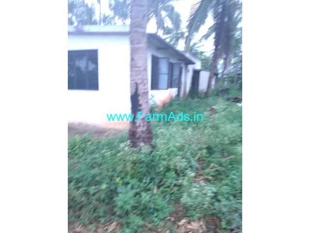 5.27 acres beautiful farm land for sale in Mysore to Bannur Road