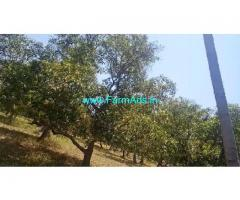 2.5 Acres Agriculture Land For Sale In Vollore