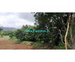4 Acres 6 Gunte  Agriculture Land For Sale In Kanakapura