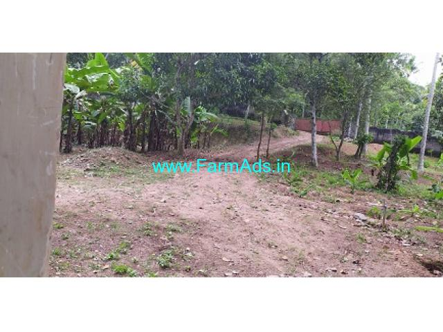 2.5 Acres Agriculture Land For Sale In Vellayani