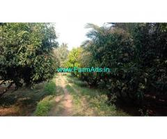 10 Acres Agriculture Land For Sale In Chemmanampathy