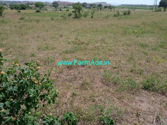 14 Acres Agriculture Land For Sale In Rajapur mandal