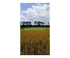 14 Acres Agriculture Land For Sale In Melmaruvathur