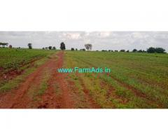 5 Acers Agriculture Land For Sale In Humnabad