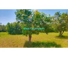 5.2 Acres Farm Land For Sale In Tiruvellore near Chennai Tirupati highway