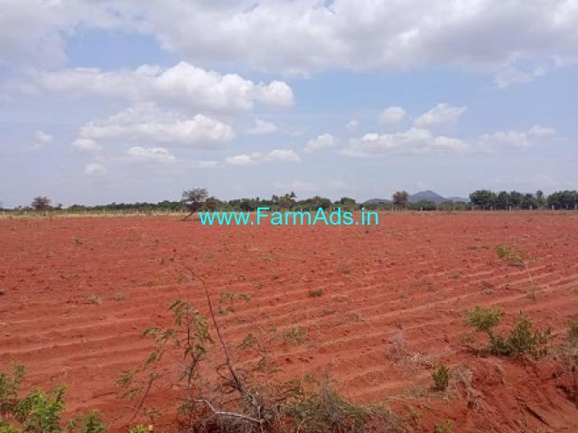75 Acres Farm Land For Sale In Mannar