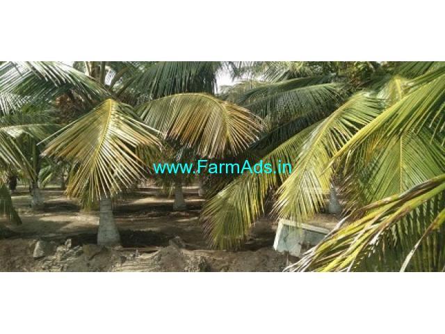 4.90 Acres Farm Land For Sale In Dharapuram