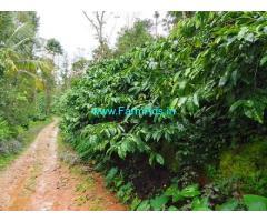 3.5 acre well maintained Robusta plantation sale in Sakaleshpur