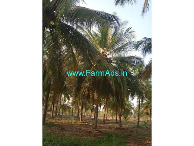12 Acers Farm Land For Sale In Sravanahalli
