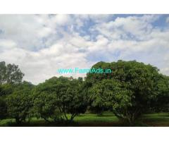 5 Acres Agriculture Land For Sale In Jalamangala