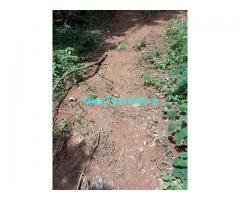 1 Acres 30 Guntas Farm Land For Sale In Chikmagalur