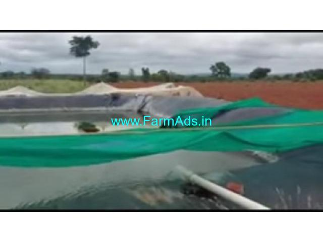 5 Acres 38 Gunta Agriculture Land For Sale In Beguru