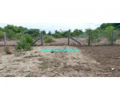 51 Cent Agriculture Land For Sale In Saravananpatti