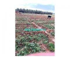 3 Acres Agriculture Land For Sale In Sulur