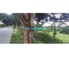 16 Guntas Farm Land For Sale In Budikote