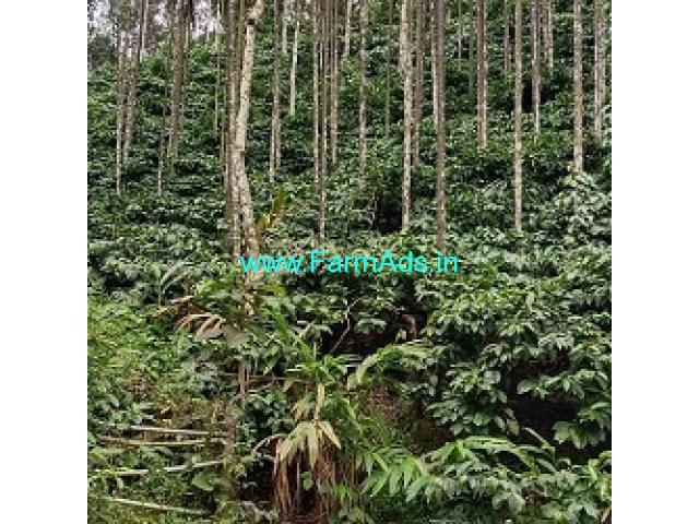 3 Acres Farm Land For Sale In Kalasa