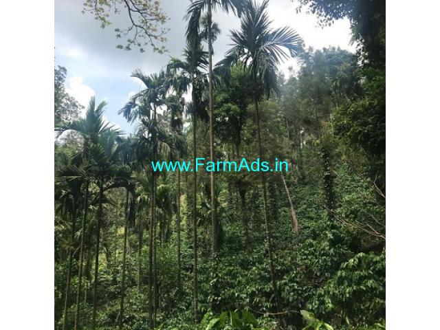 251 Acres Robusta Coffee Estate For Sale In Chikkamagaluru