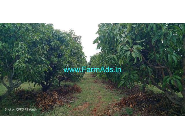Total Mango Farm land 91 Acres for Sale at Madhugiri Taluk