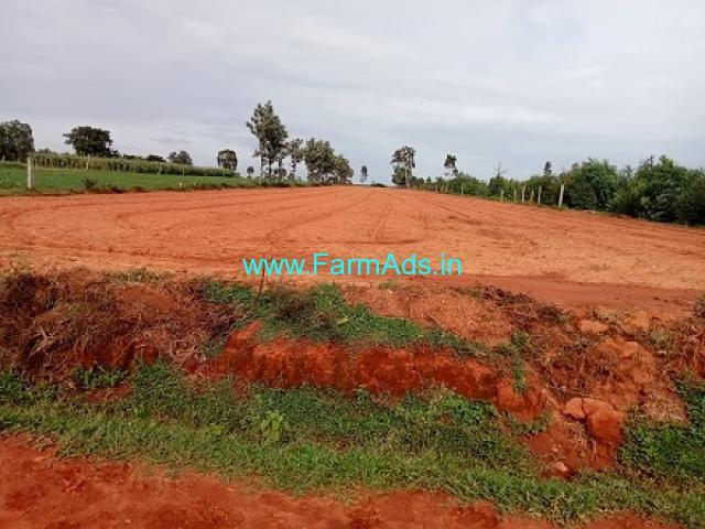 1 acre 15 gunte Agricultural Land for Sale Near Devanhalli