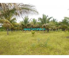 4 Acre Areca And Coconut Farm Available For Sale In Tumkur