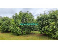 45 Acres Red soil Farm Land sale Near Tindivanam