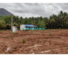 2.22 Acres Coconut Farm Land for Sale near Pollachi