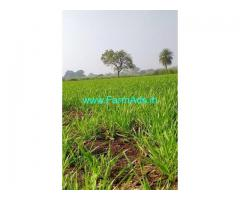 5 Acre's Farm Land for sale near Zaheerabad
