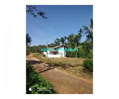 20 guntas plantation with new construction house for Sale in Mudigere