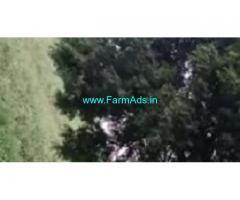 20 Gunta Farm Land For Sale In Vikarabad