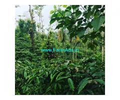 5 acre well maintained coffee estate for sale in Mudigere