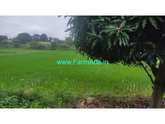 2 Acres Mango farm for Sale near Hyderabad