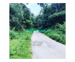 3 acre land for sale in Chikkamagalur