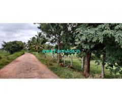 2 acres mango farm land for Sale at Gedhre