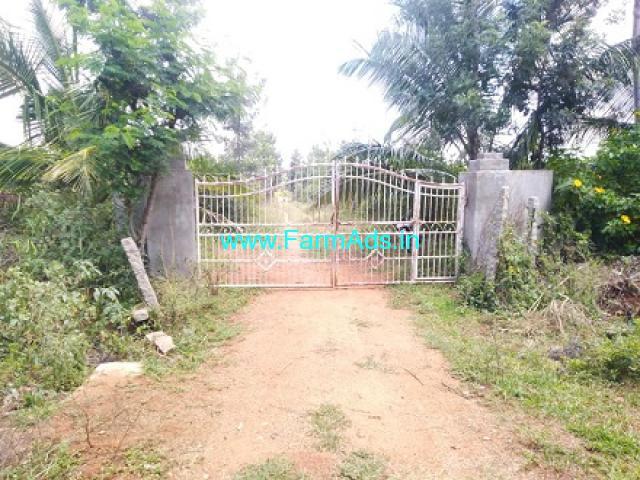 14 Acre yeilding pomegranate plantation Sale Near Parashurampura.