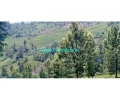 3.1 acres property for sale in Ooty