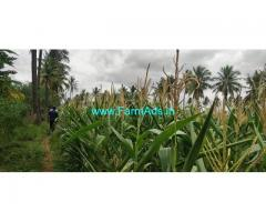 4 acre 10 kuntas Agriculture land for Sale Thondebhavi