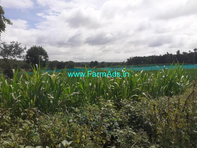 Village attached 1 acre farm land for sale at Gowdanakunte