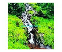 10 acre well maintained coffee estate for sale in Giri area