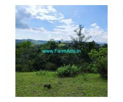 6 acres neglected coffee land for sale in Sakleshpur