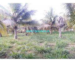 5 Acre developed Farmland sale in Town limit Hiriyur