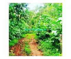 10 acre coffee estate for sale near Chikmagalur