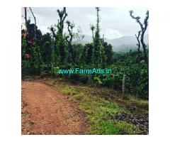 3 acre coffee estate for sale in Mudigere