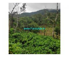 3 acre coffee estate for sale in Chikamagalur