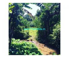3.5 acre Agri land for sale in Mudigere