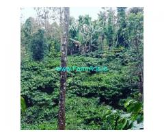 4 acre coffee estate for sale 40 km from Chikmagalur city