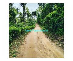 2 acre coffee estate for sale in Sakleshpur towards Mangalore