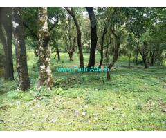 4 acres plain land sale in Mudigere