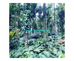 2.1 acre coffee plantation for sale in Mudigere ,Towards Bankal